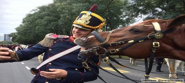 El caballo que posó para una selfie con el granadero